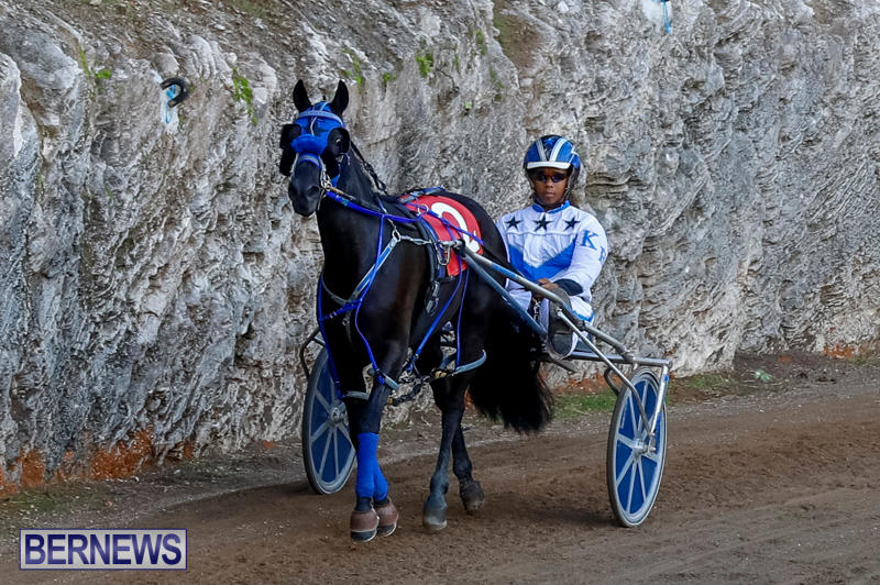 Harness-Pony-Racing-Bermuda-November-13-2017_7559