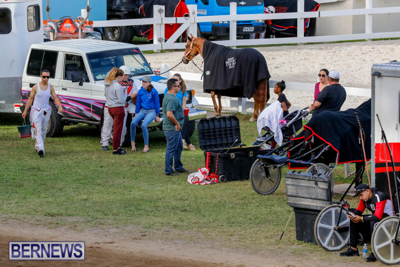Harness-Pony-Racing-Bermuda-November-13-2017_7588