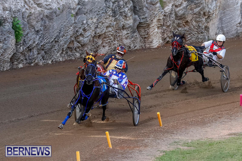 Harness-Pony-Racing-Bermuda-November-13-2017_7629