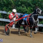 Harness Pony Racing Bermuda, November 13 2017_7697