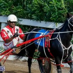 Harness Pony Racing Bermuda, November 13 2017_7701
