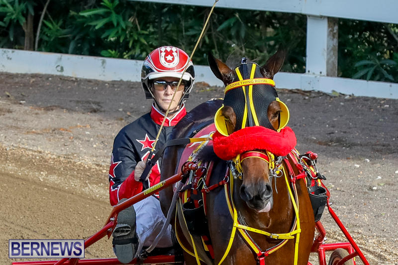 Harness-Pony-Racing-Bermuda-November-13-2017_7715