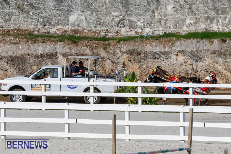 Harness-Pony-Racing-Bermuda-November-13-2017_7716