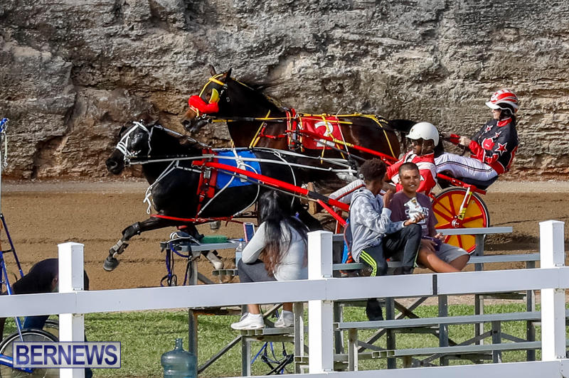 Harness-Pony-Racing-Bermuda-November-13-2017_7721