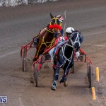 Harness Pony Racing Bermuda, November 13 2017_7728