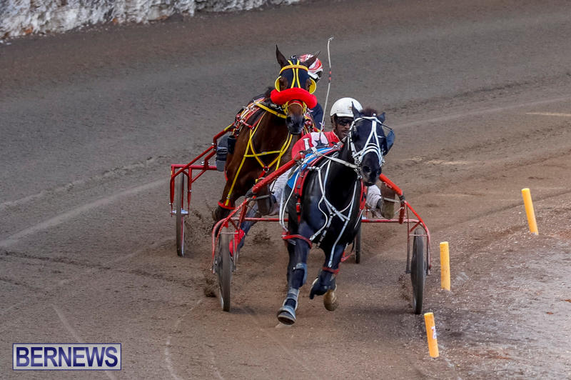 Harness-Pony-Racing-Bermuda-November-13-2017_7728