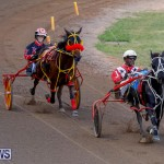 Harness Pony Racing Bermuda, November 13 2017_7733