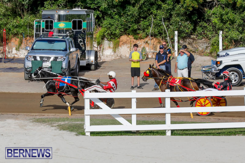 Harness-Pony-Racing-Bermuda-November-13-2017_7746