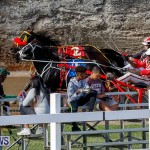 Harness Pony Racing Bermuda, November 13 2017_7783