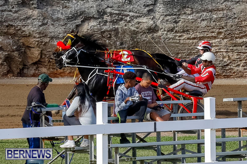 Harness-Pony-Racing-Bermuda-November-13-2017_7783