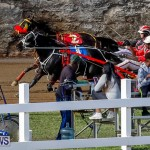 Harness Pony Racing Bermuda, November 13 2017_7784