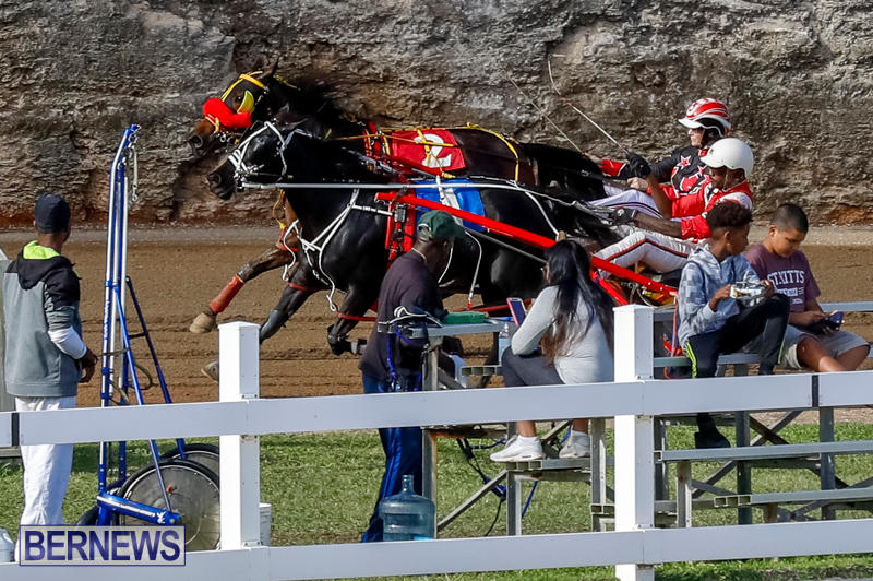 Harness-Pony-Racing-Bermuda-November-13-2017_7784