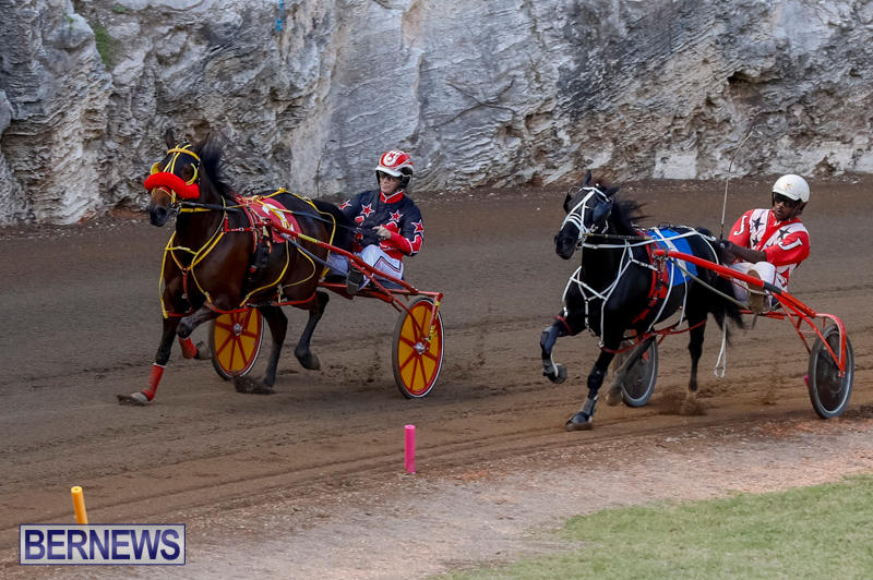 Harness-Pony-Racing-Bermuda-November-13-2017_7788
