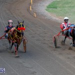 Harness Pony Racing Bermuda, November 13 2017_7798