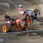 Harness Pony Racing Bermuda, November 13 2017_7804