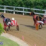 Harness Pony Racing Bermuda, November 13 2017_7807