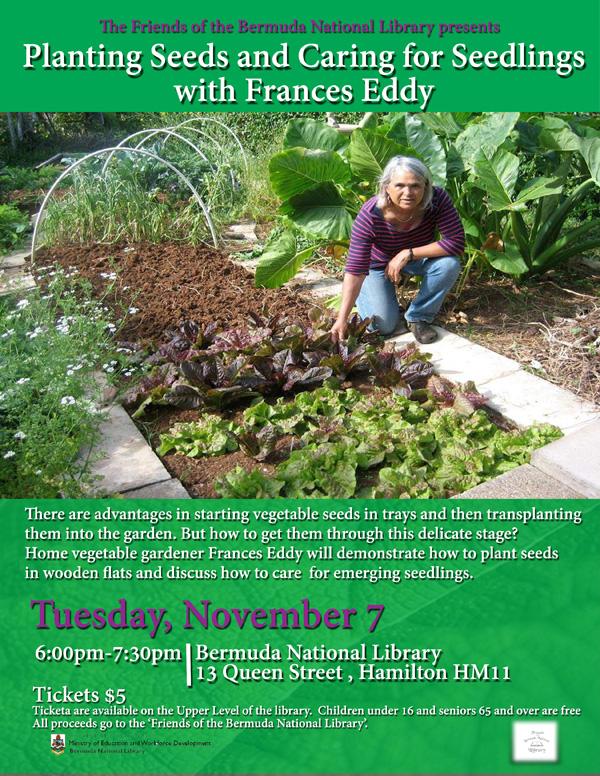 Planting Seeds and Caring for Seedlings Bermuda Nov 2017