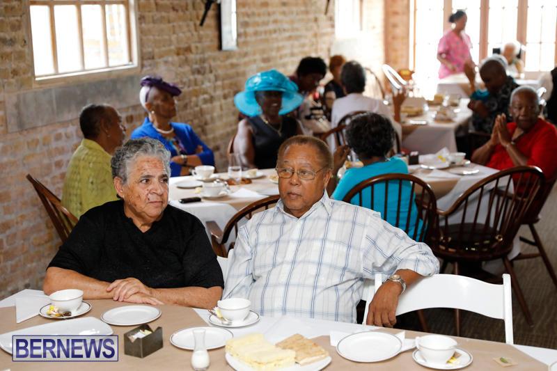 Seniors-Tea-Bermuda-November-8-2017_4430