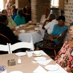 Seniors Tea Bermuda, November 8 2017_4431