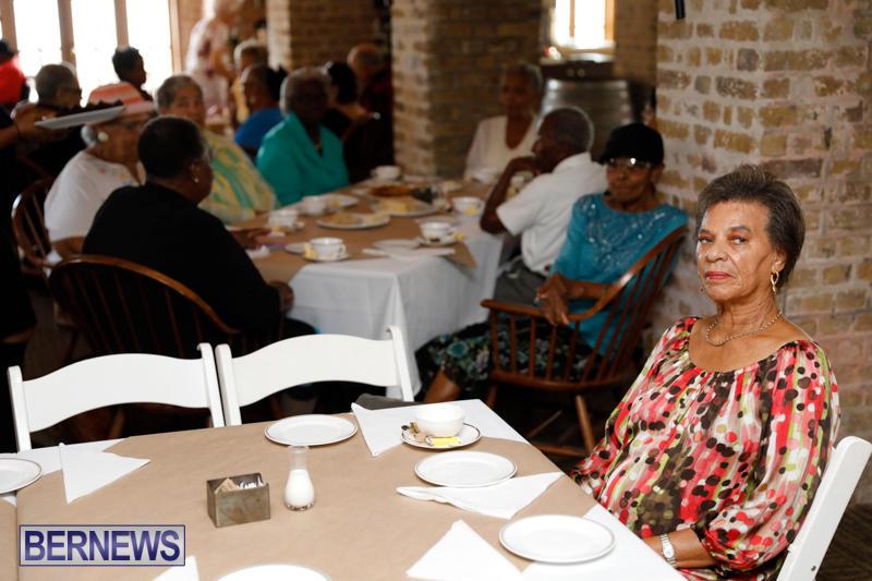 Seniors-Tea-Bermuda-November-8-2017_4431