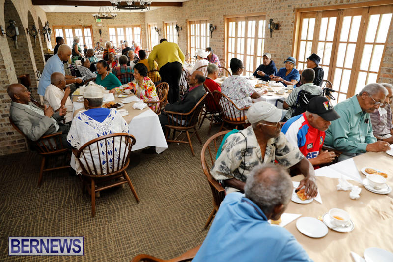 Seniors-Tea-Bermuda-November-8-2017_4432