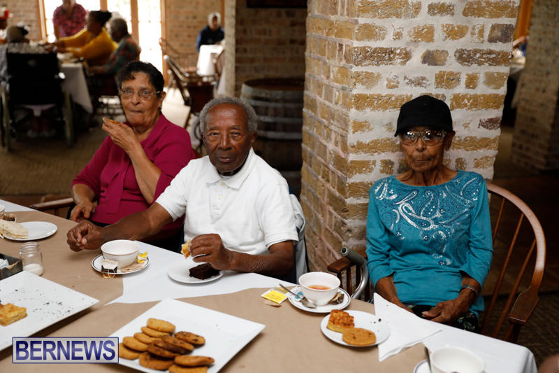 Seniors-Tea-Bermuda-November-8-2017_4443