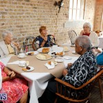 Seniors Tea Bermuda, November 8 2017_4446