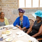 Seniors Tea Bermuda, November 8 2017_4448