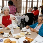 Seniors Tea Bermuda, November 8 2017_4451