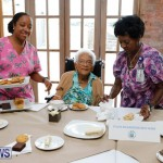 Seniors Tea Bermuda, November 8 2017_4456