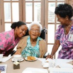Seniors Tea Bermuda, November 8 2017_4458