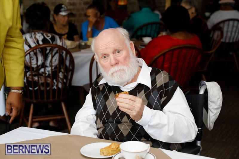 Seniors-Tea-Bermuda-November-8-2017_4464
