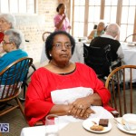 Seniors Tea Bermuda, November 8 2017_4470