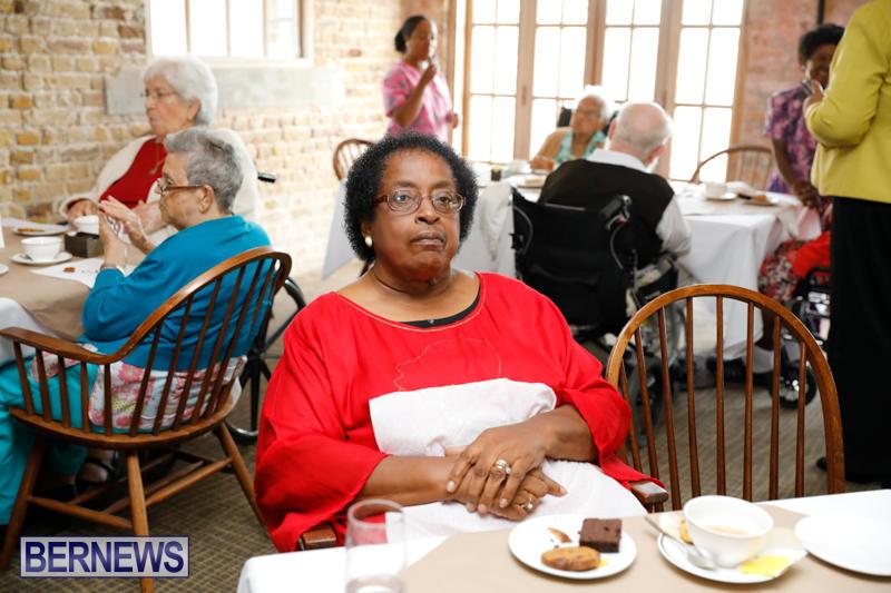 Seniors-Tea-Bermuda-November-8-2017_4470