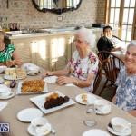 Seniors Tea Bermuda, November 8 2017_4481