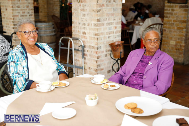 Seniors-Tea-Bermuda-November-8-2017_4484