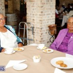 Seniors Tea Bermuda, November 8 2017_4485