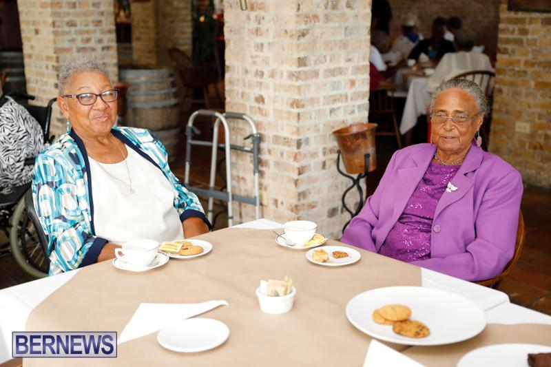 Seniors-Tea-Bermuda-November-8-2017_4485