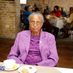 Seniors Tea Bermuda, November 8 2017_4487
