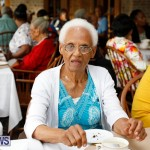 Seniors Tea Bermuda, November 8 2017_4490