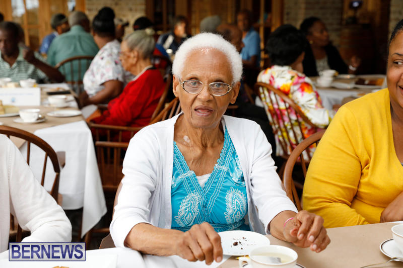Seniors-Tea-Bermuda-November-8-2017_4490