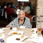 Seniors Tea Bermuda, November 8 2017_4495