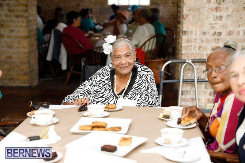 Seniors-Tea-Bermuda-November-8-2017_4495