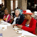 Seniors Tea Bermuda, November 8 2017_4496