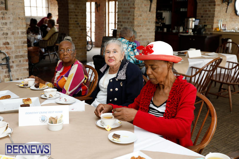 Seniors-Tea-Bermuda-November-8-2017_4496