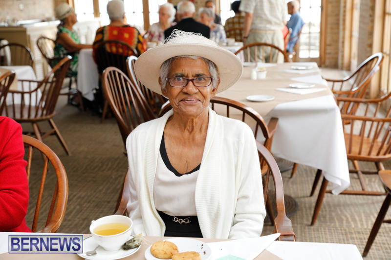 Seniors-Tea-Bermuda-November-8-2017_4497