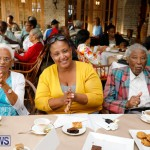 Seniors Tea Bermuda, November 8 2017_4498
