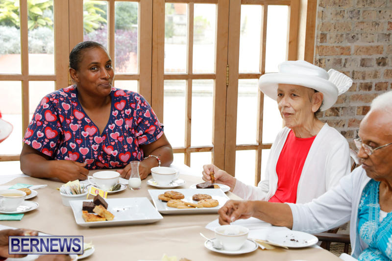Seniors-Tea-Bermuda-November-8-2017_4499