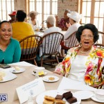 Seniors Tea Bermuda, November 8 2017_4514