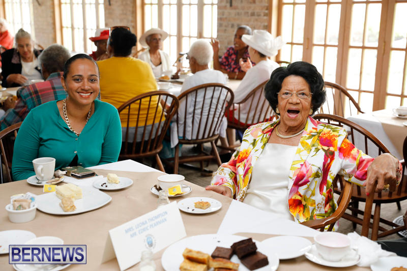 Seniors-Tea-Bermuda-November-8-2017_4514